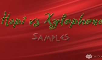Hapi VS Xylophone Samples