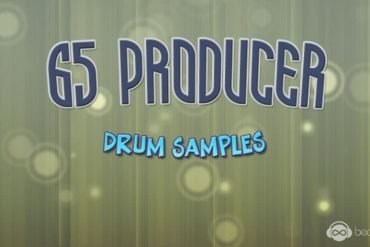 65 Producer Drum Samples