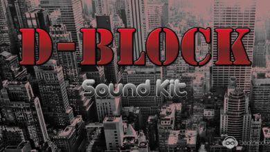 D-Block Sound Kit