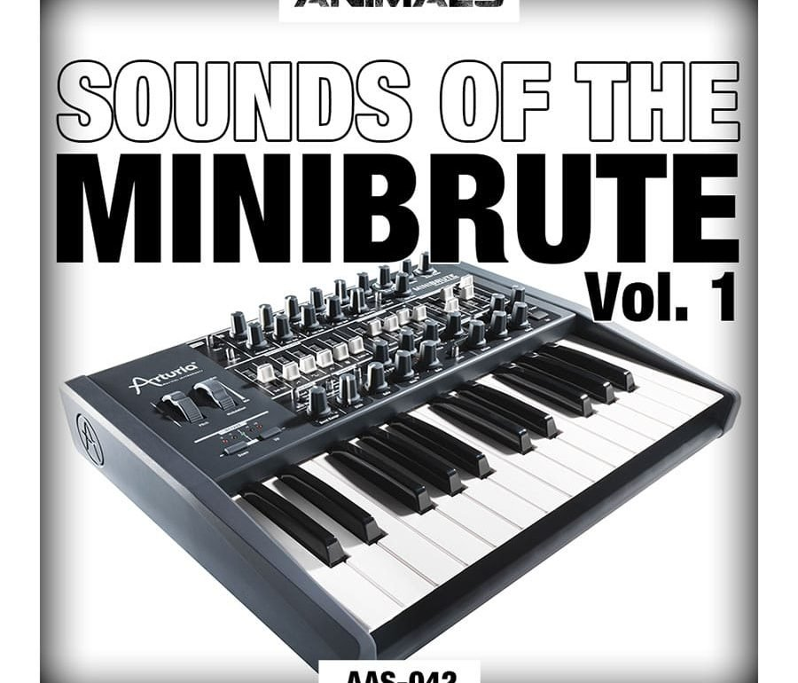 Minibrute Samples
