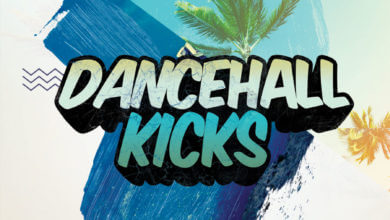 Dancehall Kicks Samples