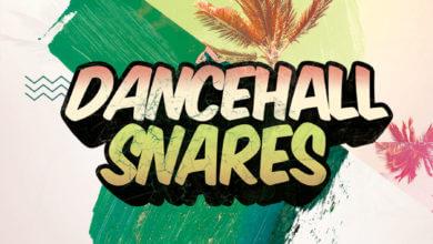 Dancehall Snares Samples