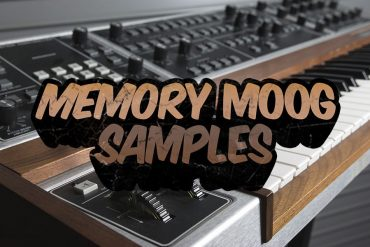 Memory Moog Samples