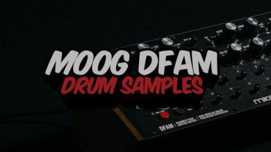 Moog DFAM Drum Samples